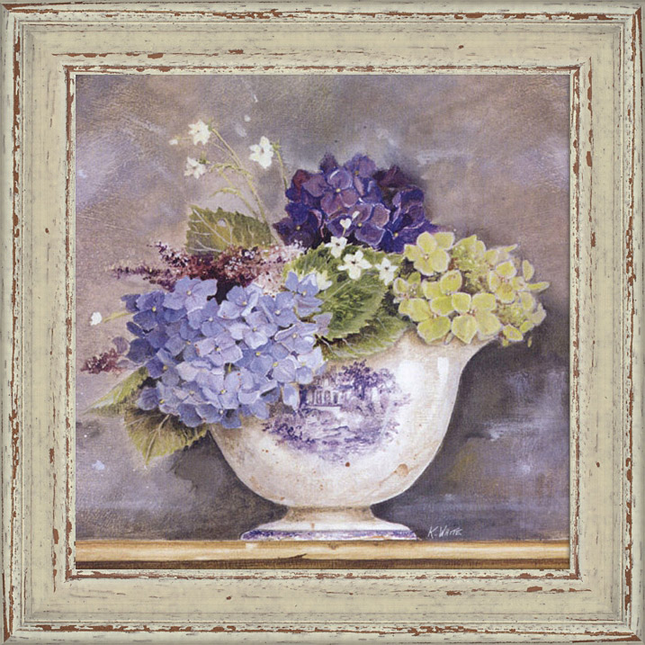 Ortensie in vaso for Ortensie in vaso